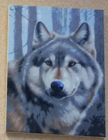 """Картина по номерам """"Волк"""" 090-AS, нарисованная покупателем"""