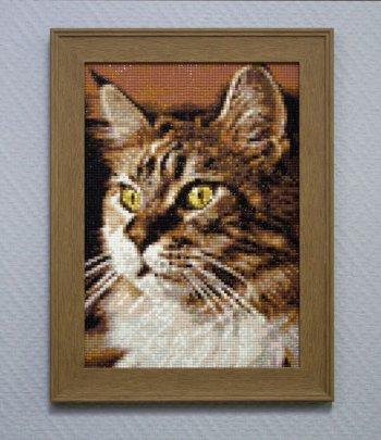 """Мозаичная картина Ag 159 """"Домашний кот"""" в раме"""