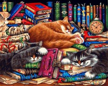 Библиотека кошек