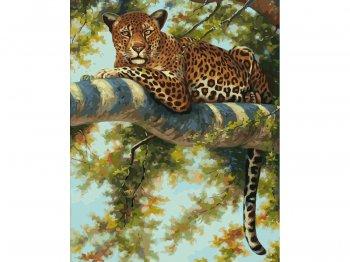 Леопард в тени ветвей
