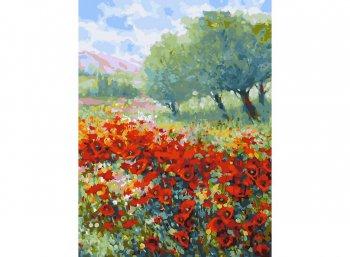Весна в Провансе