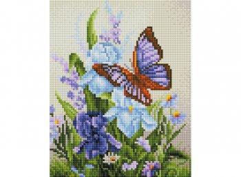 Бабочка на ирисах