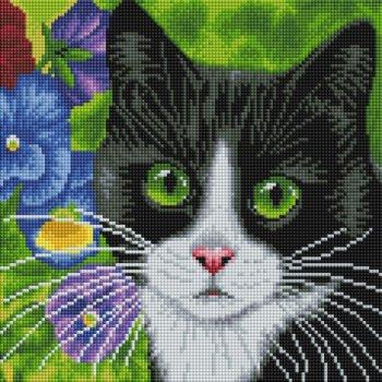 Кот в анютиных глазках