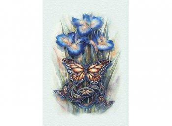 Бабочки и ирисы