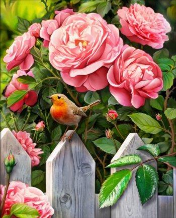 Птичка в саду