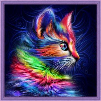 Разноцветный котенок