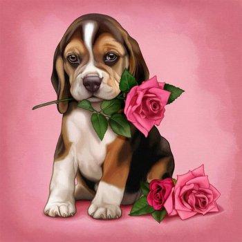 Романтичный друг
