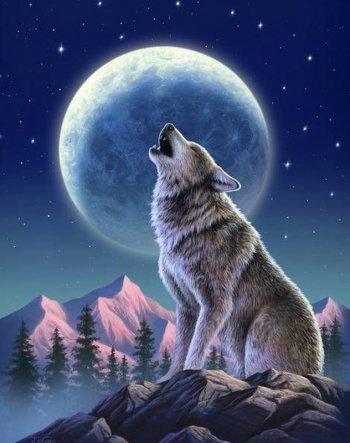 Лунный страж