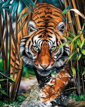 Хищник джунглей