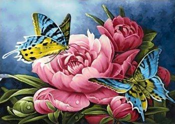 Бабочки и пионы
