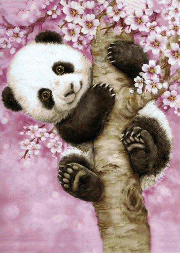 Ласковая панда
