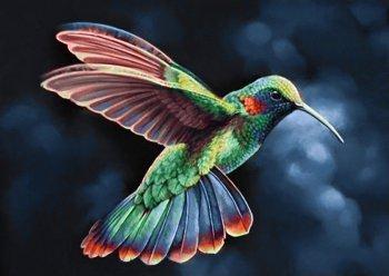 Тропическая птичка