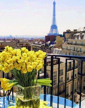 Париж. Желтые розы