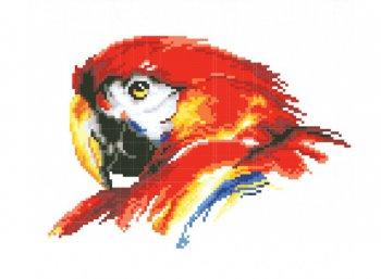 Портрет попугая